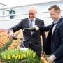 20170315-Photo-Royal-Commissioner-Johan-Remkes-baptizes-tulip-Golden-Dragon